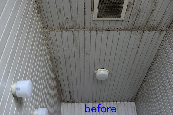 浴室、風呂の天井、壁のカビ取り クリーニング前