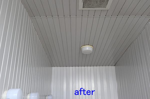 浴室、風呂の天井、壁のカビ取り クリーニング後