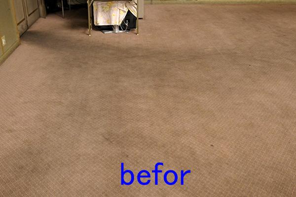 絨毯、カーペットクリーニング カーペットのしみ抜き