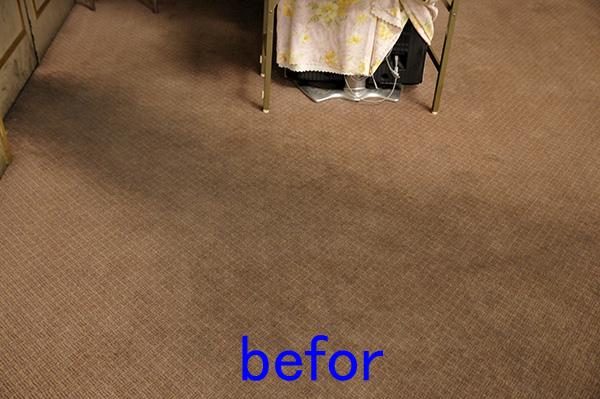 絨毯クリーニング カーペットクリーニング
